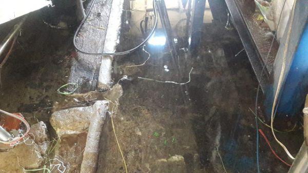 Bất ngờ kiểm tra cơ sở sản xuất đá viên, phát hiện hàng loạt quy trình sản xuất không đảm bảo an toàn vệ sinh an toàn thực phẩm.