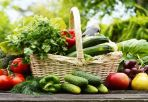 3 phương cách giúp người bệnh thoái hóa khớp khỏe mạnh tại nhà mùa dịch