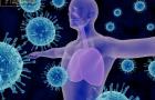 Tác dụng không ngờ của đông trùng hạ thảo đối với hệ miễn dịch