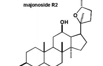 Hoạt chất MR2 trong sâm Ngọc Linh có khả năng chống ung thư