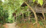Nghe tin 42 người có HIV ở Phú Thọ: Dân hoang mang kéo nhau đi xét nghiệm