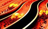 8 lý do bạn nên biết nhóm máu của mình