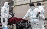 Số người chết vì COVID-19 toàn cầu có thể lên tới 5 triệu vào tháng 3
