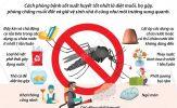 Chủ động phòng chống sốt xuất huyết Hà Nội